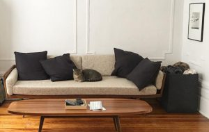 Introducing Maia and Her Recently Acquired Smilow® Furniture
